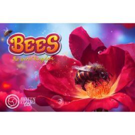Bees - The Secret Kingdom - EN